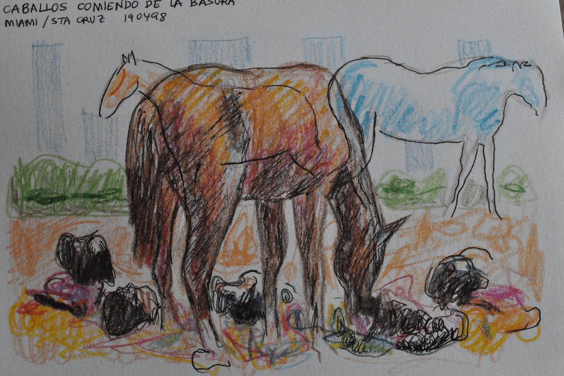 caballos comiendo de la basura